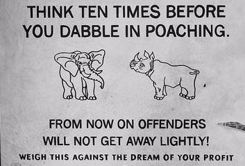 Elefantkrybskytter har dræbt fire personer efter skudveksling