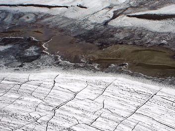 Gamle sygdomme bliver vækket i den smeltende is