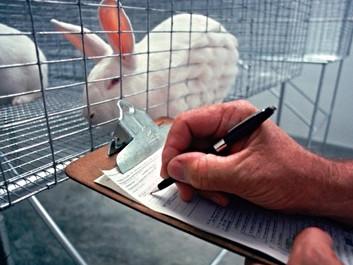 Forskere hjælper Kina med at udfase dyreforsøg