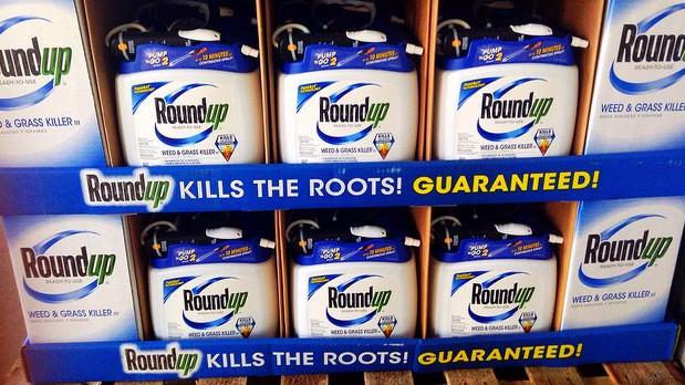 EU-politikerne tøver med at forlænge godkendelsen af Roundup. Foto: Mike Mozart/flickr