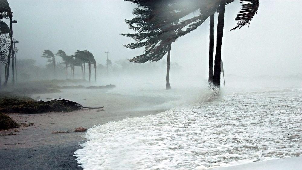 Den globale opvarmning og havets stigning sker i et usædvanligt tempo, lyder det i en ny rapport fra over 50 forskere. Foto: Pixabay
