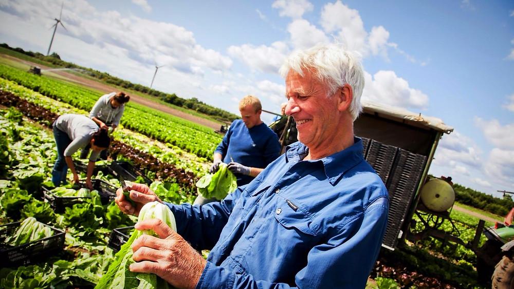 De offentlige køkkener bør udelukkende købe økologiske varer senest i 2025. Her ses økolog Lars Skytte. Foto: Wasabifilm.dk
