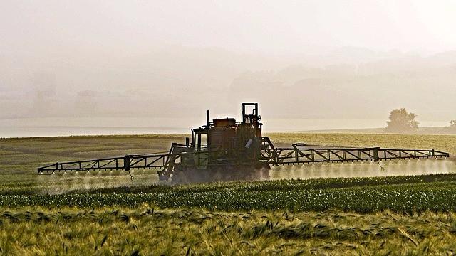 Forskere advarer mod pesticidrester i danskeres urin. Foto: Pixabay