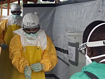 Miljøminister: Skovrydning var skyld i ebola-epidemien