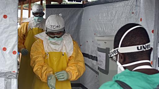 Rydningen af skovområder øger risikoen for, at sygdomme som ebola overføres fra dyr til mennesker, lyder det fra den franske miljøminister. Ebola-udbruddet i Vestafrika de seneste år, har kostet over 11.000 mennesker livet. Foto: CDC Global/Wikimedia Commons