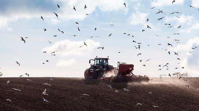 """Landbrug og Fødevarer kalder Klimarådets rapport for """"uintelligent"""" - uden dog at have læst den. Foto: News Øresund - Johan Wessman/flickr"""