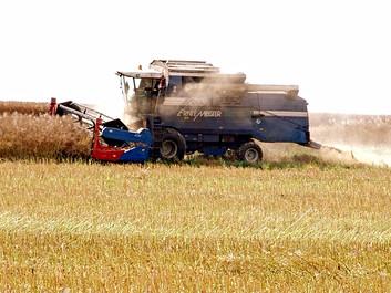 Forskere har fundet en metode, der kan gøre landbruget mere bæredygtigt