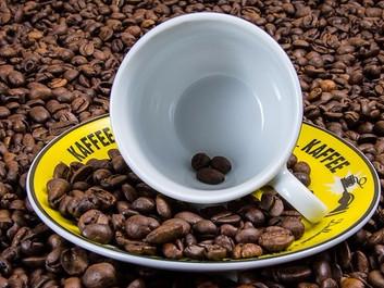 Klimaforandringer truer verdens kaffeproduktion - branchen erkender alvoren
