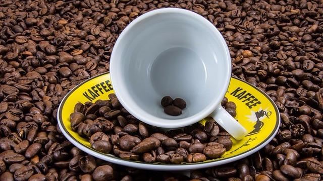Verdens kaffeproduktion er stærkt truet på grund af klimaforandringerne. Foto: Pixabay