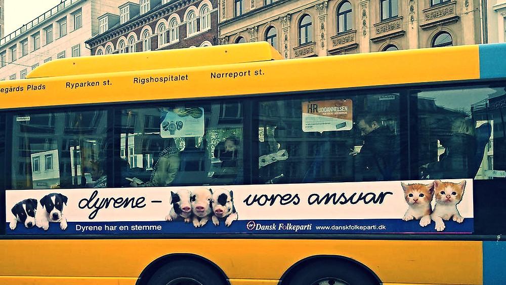 DF vil atter forsøge at få indført et dyrepoliti i Danmark. Foto: Sakena/flickr