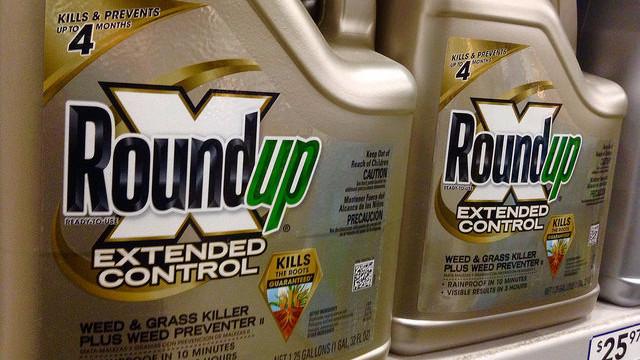Californien vil have Roundup på en liste over kræftfremkaldende stoffer - det har ført til et sagsanlæg fra producenten. Foto: Mike Mozart/flickr