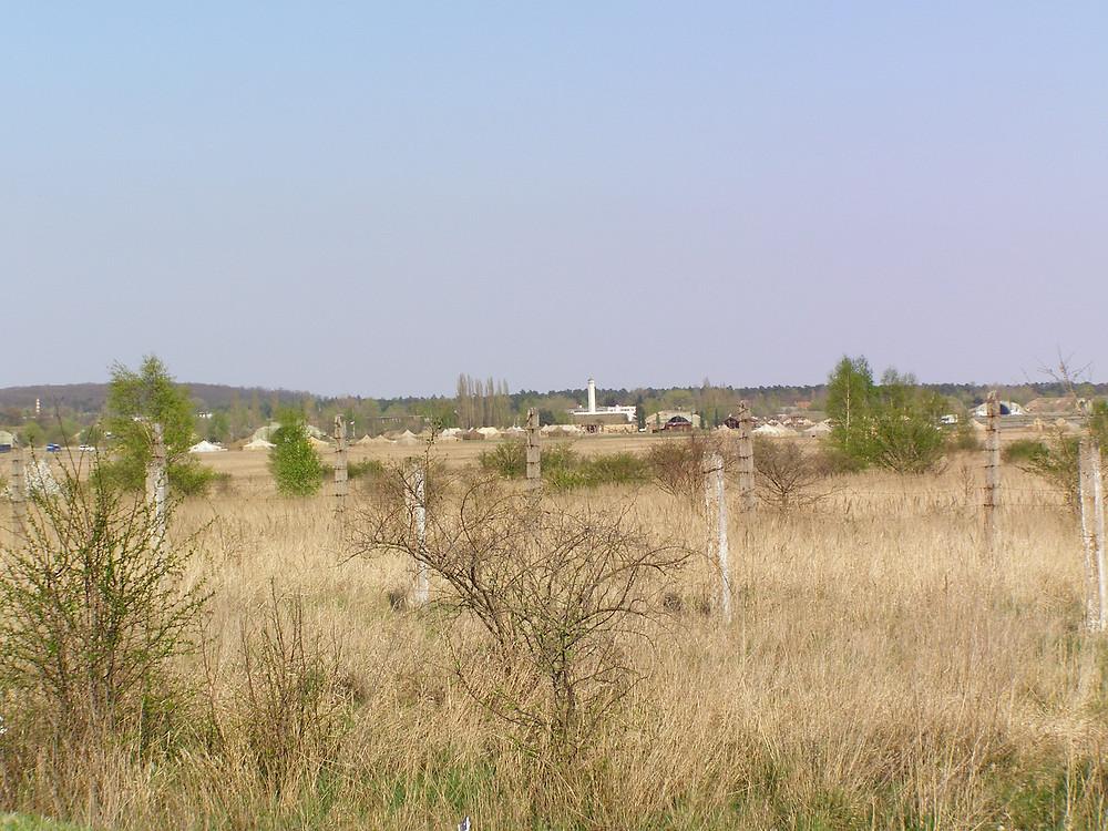 Milovice har efterhånden stået nogenlunde uberørt i flere år, og dermed har det høje græs haft en negativ påvirkning på det øvrige planteliv. Foto: Wikipedia Commons