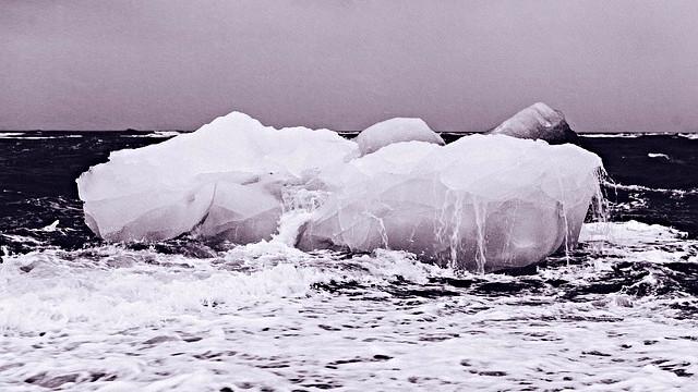 Nordpolen blev i sidste uge ramt af en markant temperaturstigning. OBS: Billedet er ikke taget ifm. den aktuelle nyhed. Foto: Pixabay