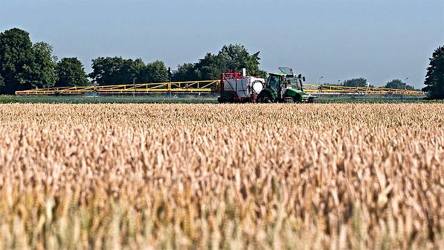 Landbrugets belastning af naturen med sprøjtegifte er steget fra 2012/13 til 2013/14. Foto: Pieter van Marion/flickr