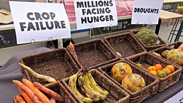 Klimaforandringerne vil bl.a. ramme landbruget verden over særdeles hårdt. Foto: Oxfam International