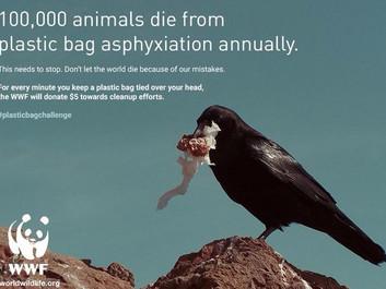 WWF raser over at blive misbrugt i falsk og livsfarlig kampagne