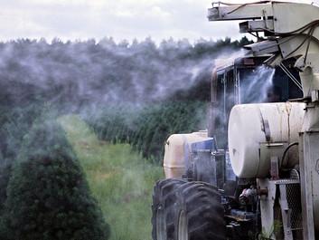 Professor advarer: Pesticider kan give hjerneskader