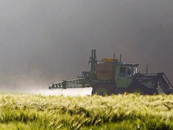 Studie: Pesticider kan øge risikoen for, at gravide mister deres barn