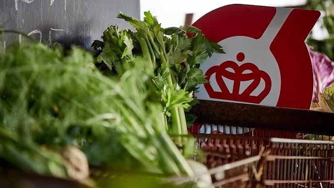 Økologi giver landmænd bedre indtjening, renere jord, renere vand, er mindre klimabelastende og øger biodiversiteten sammenlignet med konventionelt landbrug. Det viser et nyt studie. Foto: Økologisk Landsforening