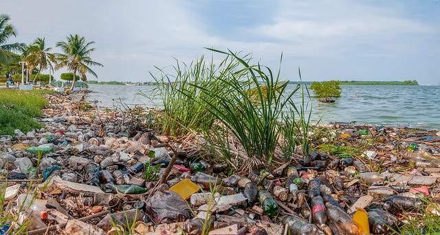 I dekretet står bl.a., at vi forurener havet. Her ses forurening i Maracaibo-floden i Venezuela. Foto: Wilfredo Rodríguez/flickr