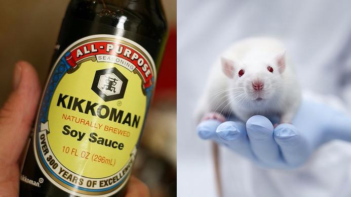 Kikkoman Corp. laver dødelige dyreforsøg. Fotos af: Richard Masoner og Novartis AG (klippet sammen af Globalen.dk)
