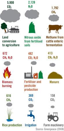 Landbrugets udledning af drivhusgasser kommer fra flere forskellige områder, bl.a. rydning af skovområder og metangas fra kvæg. Data: Greenpeace