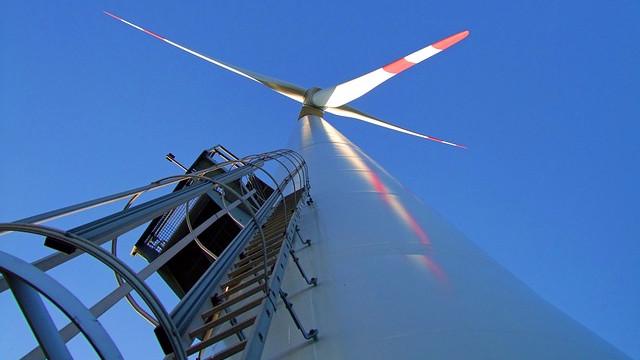 Danmark bør fastholde en ambitiøs grøn politik, så der fortsat kan skabes arbejdspladser inden for branchen, lyder det fra erhvervslivet. Foto: Pixabay