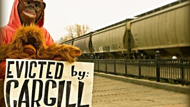 Miljøfolk har tidligere demonstreret mod palmeolieproducenten Cargill ved dens hovedkvarter i USA. Den er blandt de producenter, der dropper et ambitiøst løfte fra 2014. Foto: Rainforest Action Network/flickr