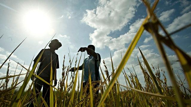 Den globale opvarmning fortsætter: Juli blev den varmeste måned nogensinde målt, ifølge Nasas data. Foto: CIF Action/flickr