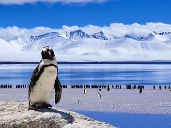 Stor sprække breder sig på Antarktis