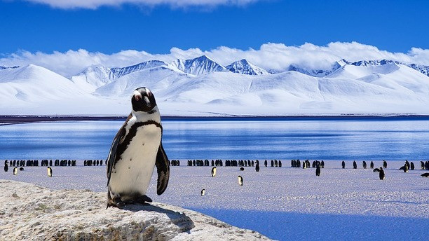 Et stort stykke af Antarktis er ved at brække af. Foto: Pixabay