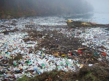 Regeringen vil gå til kamp mod plastikforurening
