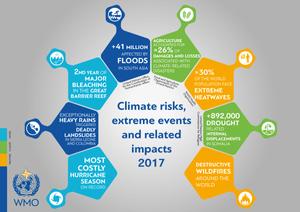 Klimarelaterede skader i 2017 blev rekorddyre. Kilde: WMO