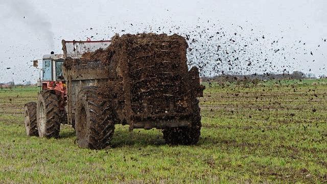 Mængden af gødning fra landbruget er nu så stor, at branchen er overrepræsenteret på en liste over de mest vandforurenende virksomheder i USA. Foto: Natural England/Peter Roworth/flickr