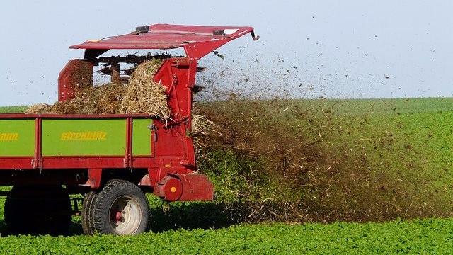 Landbruget må nu gøde mere. Men det er til skade for miljøet, mener en landbrugsorganisation. Foto: Pixabay