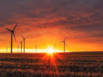 USA: Politikere vil forbyde strøm fra vindmølle- og solcelleparker