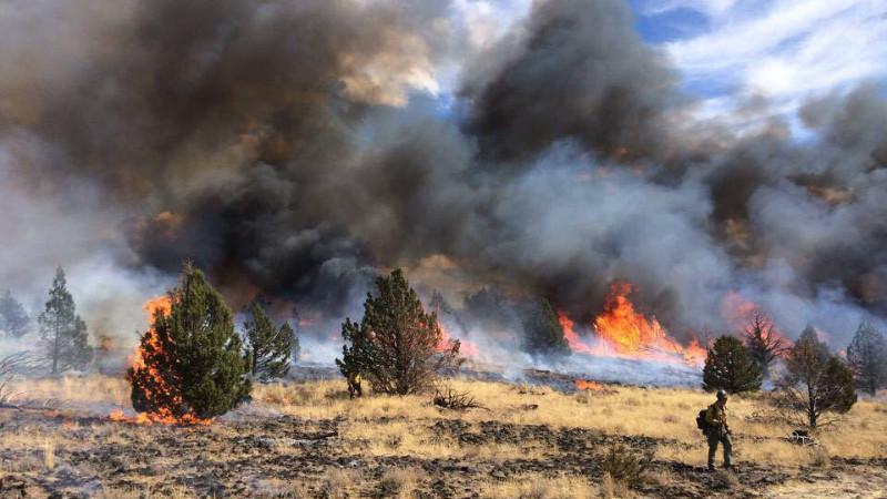 Det meste af Sydamerika samt dele af Afrika, Mellemøsten, Europa og Asien har haft rekordhøje temperaturer i september. Her ses en skovbrand i Oregon, USA. Foto: Ilp Photo Archie/flickr