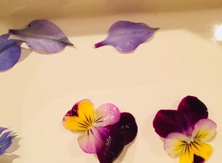 お花の砂糖漬けレシピ