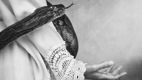 Perché il serpente è simbolo del peccato e della manifestazione della coscienza?