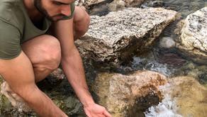 Le mani nell'acqua.