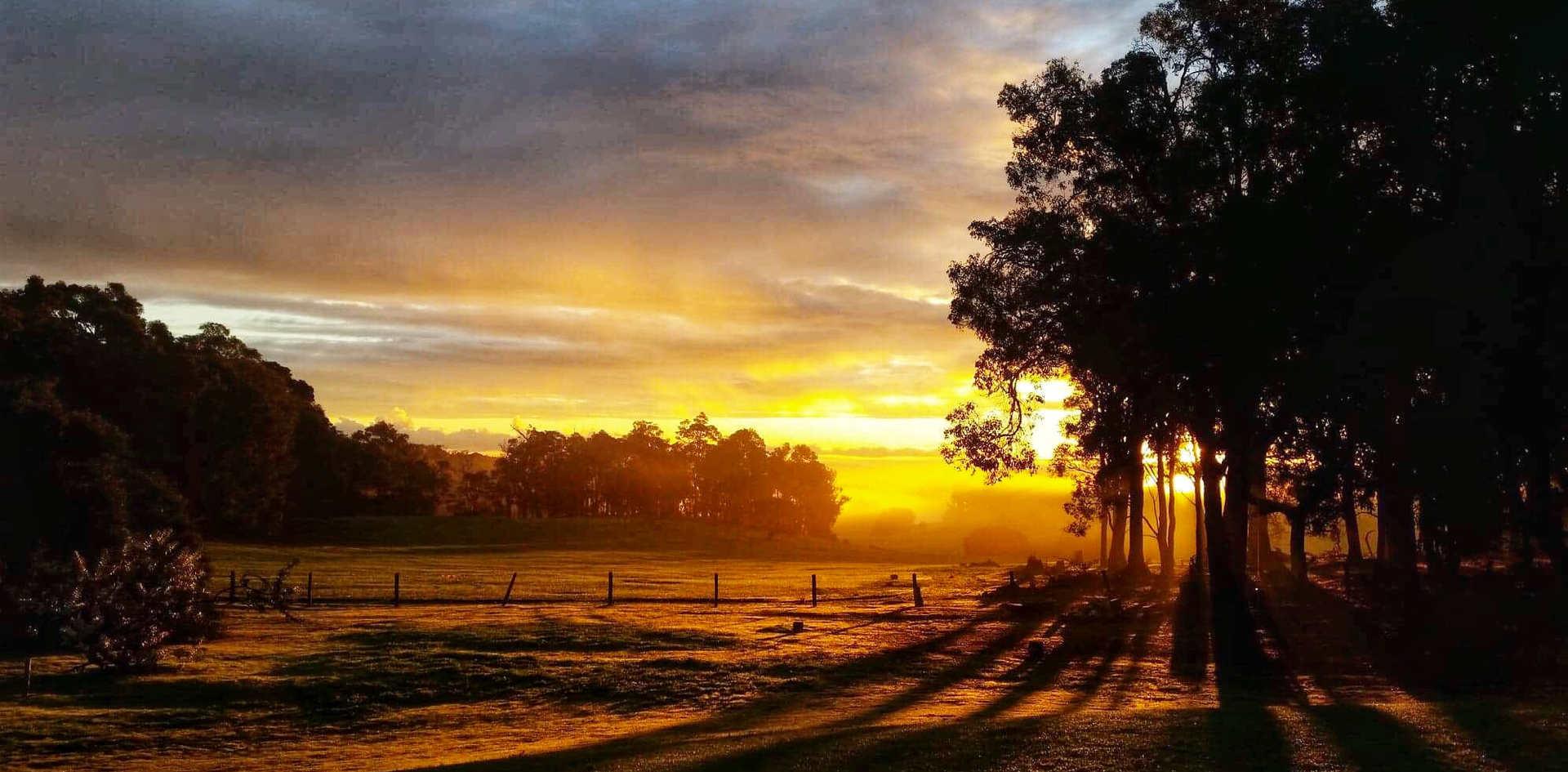 Sunrise Winter