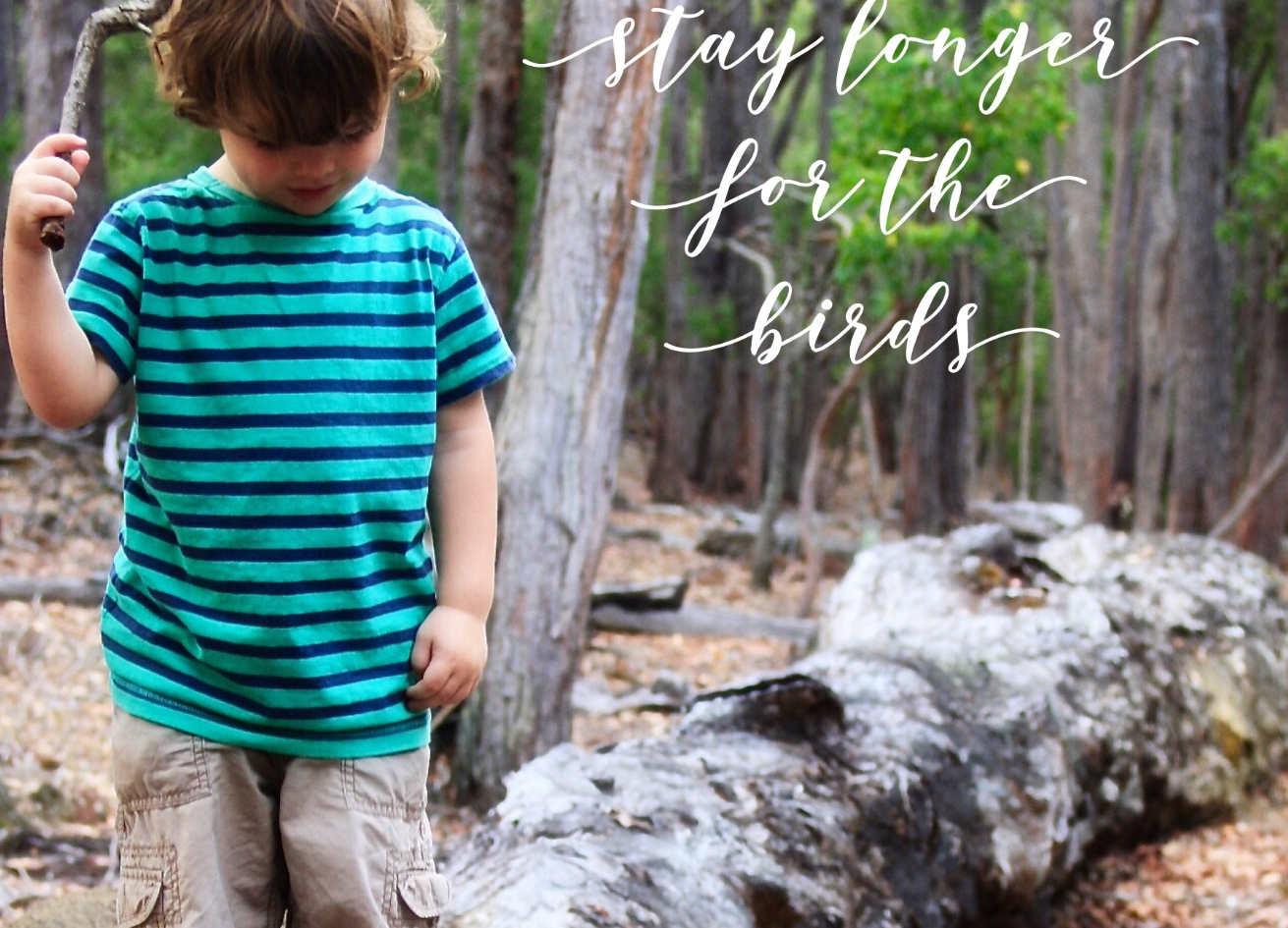 Stay Longer - For The Birds