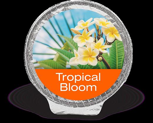 Tropical Bloom Fragrance Pod