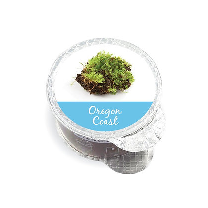 Oregon Coast Fragrance Pod