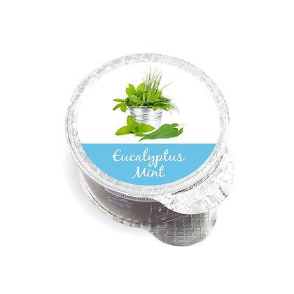 Eucalyptus Mint Fragrance Pod