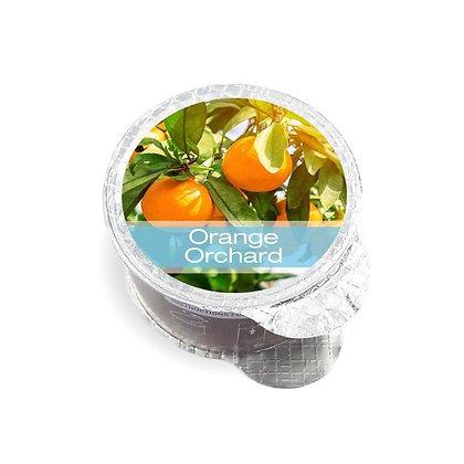 Orange Orchard Fragrance Pod