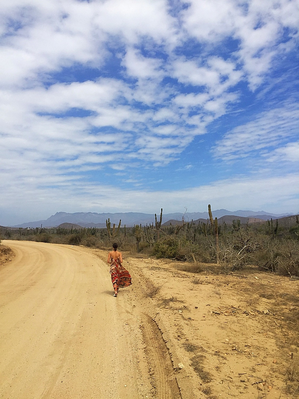 Life on the road in Todos Santos, Mexico