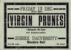 Virgin Prunes Concert Ticket