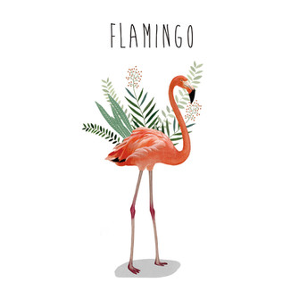 [May]Flamingo
