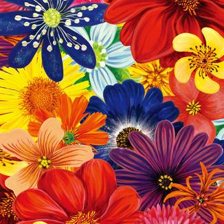 [Yoanna]Flower-collection2